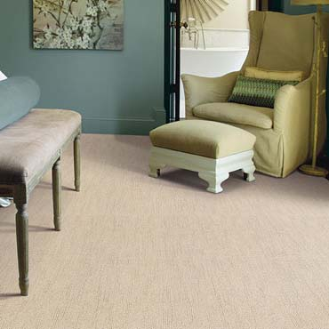 Caress Carpet by Shaw | Farmingdale, NY